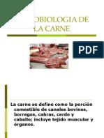 Microbiologia de La Carne