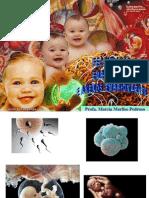 Embriologia humana e de aves