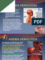 Anemia Perniciosa-talasemia (05)