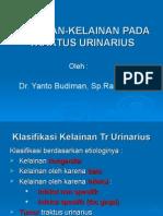 Kuliah Blok Urogenital Kelainan 1