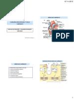 Funcion Miocardica y Ciclo Cardiaco Clase 3 AV