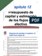 Capitulo 12 Presupuesto Capital