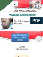 9na Clase Tumores Odontogenos