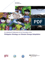 PHIL CCA_Strategy_brochure.pdf