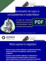 7 B. cupru.doc