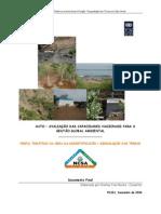 Perfil Desertificação e Terras