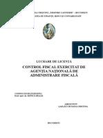 Licenta Control Fiscal