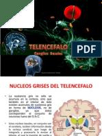 5 Clase - Nucleos Grises Del Telencefalo