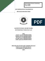 SAP-TAMAN BACAAN.doc