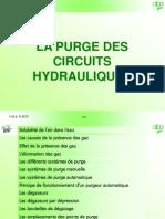 purge-1
