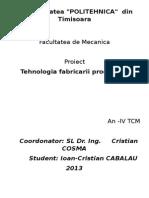 Universitatea Politehnica PROIECT TFP