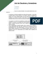 SAP - FI Tema 4 Control de Deudores y Acreedores