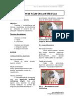 rot_anestesia.pdf