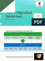 TGD y Dificultad Intelectual