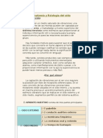 Anatomía y fisiología del oído.doc