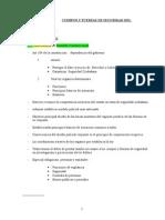 CUERPOS Y FUERZAS DE SEGURIDAD DEL ESTADO.doc