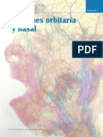 Anatomia Regiones Orbitaria y Nasal