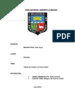 Informe 6. Salida a La Costa Verde