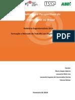 relatorio-2014TENDÊNCIAS E PERSPECTIVAS DA ENGENHARIA NO BRASIL.pdf
