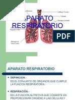 Aparato Respiratorio Coe_2