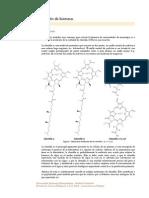 AbsorbanciasClorofilas