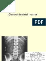 Gastrointestinal Normal