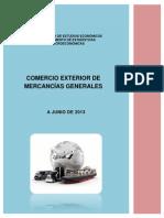 Informe Comex 06 2013