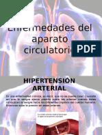 enfermedadesaparatocirculatorioyexcretor-130215103625-phpapp02