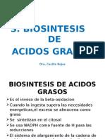 3 -Biosintesis de Acidos Grasos