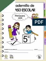 Cuadernillos de Repaso Escolar Quinto