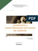 produccion y comercializacion de huevos de codorniz.docx
