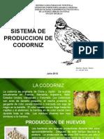 presentacinalvaro-huevos de codorniz.pptx