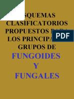 03 - ESQUEMAS DE CLASIFICACION