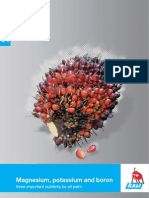 Information About Oil Palm Nutrition