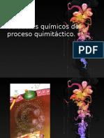 Quim Iot Axis