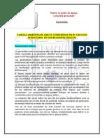 43-B-Gómez.pdf