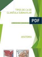 CA Glandula Submaxilar