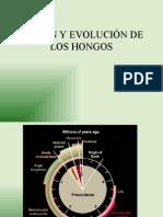 19 - ORIGEN Y EVOLUCIÓN DE LOS HONGOS