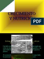 20 - Crecimiento y Nutricion I