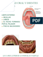 Clase 4 Digestivo (1)
