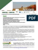 Notiziario n01