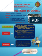 auditoria de capital.pptx