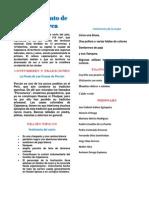 Departamento de Cajamarca.pdf