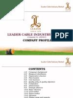 Company Profile (LCIB)