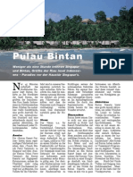 Bintan, Paradies vor der Haustür von Singapur