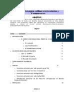 Analisis de La Realidad Nacional Inversion Extranjera en Mexico Antecedentes y Consecuencias