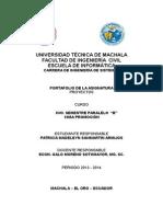 Portafolio Proyectos Patricia