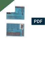 PDF Documento (401164)