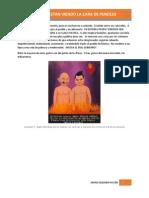 Mexicano - te estan viendo la cara de pendejo.pdf