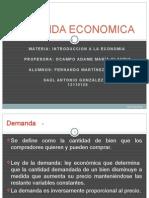 DEMANDA-ECONOMICA